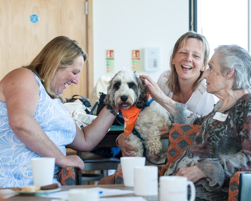 A group of two women and a senior women petting a dog. - ©Dogs Fot Good